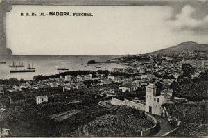 portugal, MADEIRA FUNCHAL, Panorama (1910s) B.P. 107