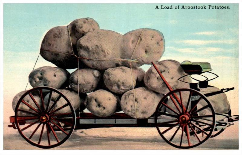 16117  Exaggeration Aroostock Potatoes