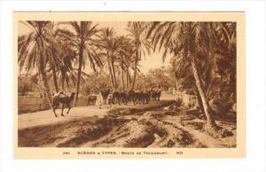 Route de Touggourt, Algeria, 1910-30s