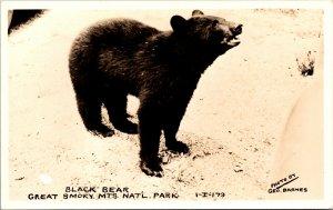 US Tennessee Smoky Mountains National Park Black Bear Postcard unused 1930s