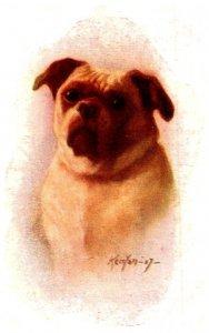 Dog , , artist signed