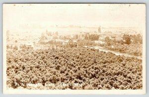 Emmett Idaho~Orchard Scene~Cherries? Apples?~Big Farm Houses~Barns~c1920s RPPC