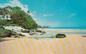 Jamaica Land Of Wood & Water Beach Scene
