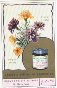 Liebig Trade Card S1617 New Flowers No 6 Garofani