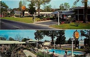 NC, Wilmington, North Carolina, Americana Motel, Hugh Morton No. P60432