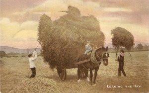 Leading the hay. Cart Horse Nice old vintage Emglish postcard