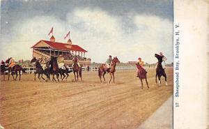 Sheepshead Bay, Brooklyn, NY, USA Horse Racing Trotter, Postcard Unused