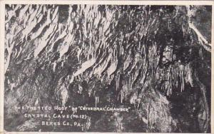 The Fretted Roof Of Cathedralchamber Crystal Cave Berks County Pennsylvania