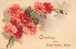 Twin Lakes Minnesota~Greetings~Red and Pink Wild Roses~Buds~1908 Postcard
