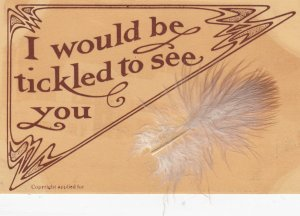 Attached Feather ; I would be tickled to see you , 00-10s