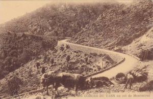 Gorges Du Tarn Au Col De Montmirat, Lozere, France, 1900-1910s
