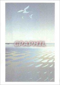 Postcard Modern Malcolm Terns Fishing War New Zealand
