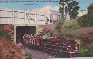 ROANOKE , Virginia , 1930-40s Zoo Choo Miniature Train