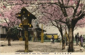 PC CPA YOKOHAMA cherry blossoming Noge Hill JAPAN (a17713)