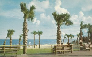MYRTLE BEACH , South Carolina , 1950-60s