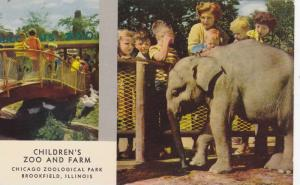 2-Views, Baby elephant, Children´s Zoo and Farm, Chicago Zoological Park, Br...