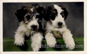 Dog, Dogs, Postcard Post Card
