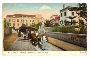 Madeira. Funchal. Carro de Bois, Portugal, 00-10s