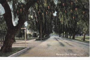 Marengo Avenue lined with Weeping Willow Trees, PASADENA, California, 00-10s
