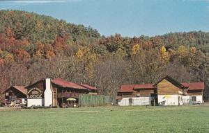 Bavarian Brook Lodge, Log Cabins, Chattahoochee River, Helena, Georgia 40-60s