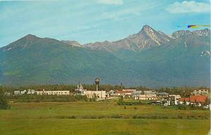 View of Palmer Alaska Ak Chrome Postcard