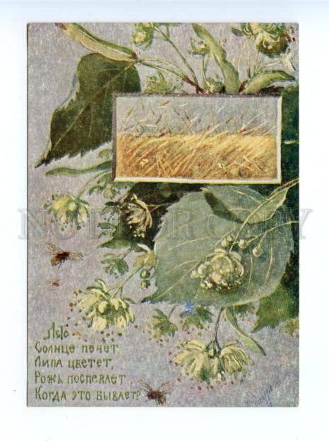 172742 SUMMER Bee by ENDAUROVA vintage Russian RARE PC