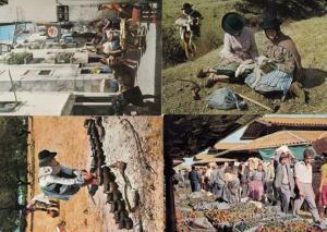 Portugal Street Markets Donkey Tending Pottery Mowers 4x Culture Postcard s