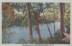 New York Greetings From Conesus Lake 1950
