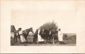 Brookings South Dakota~Trio of Ladies in White Manage Horses & Colts~1909 RPPC