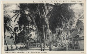 VIEW showing Palm Trees at Ganango Beach - location of famous 1962 uprising 1950