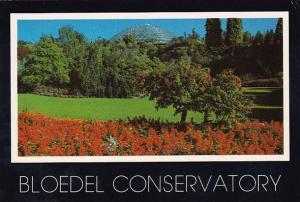 Canada Bloedel Conservatory Queen Elizabeth Park Vancouver British Columbia