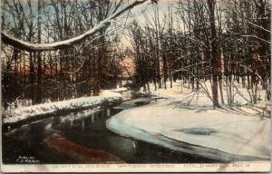 Coldwater Michigan~Watson Woods~Snowbanks on Creek~1908 Handcolored Postcard