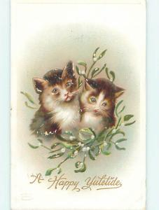 Surface Wear 1909 christmas TWO CUTE KITTEN CATS WITH FLOWERS o4256