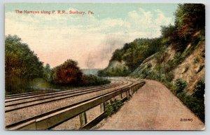 Sunbury Pennsylvania Railroad Narrows Curve Below the Bluffs~c1910 Postcard