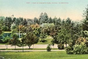 WA - Tacoma, View in Wright's Park
