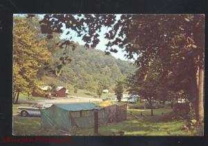 GREENUP KENTUCKY CAMPING AT GREENBO LAKE STATE PARK ADVERTISING POSTCARD