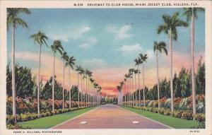 Florida Hialeah Driveway To Club House Miami Jockey Club 1936