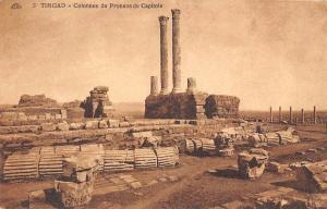 Algeria Timgad, Colonnes du Pronsos du Capitole Ruines