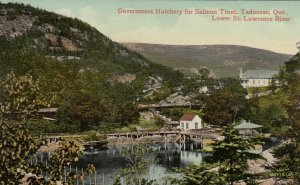 TADOUSAC, Quebec,1900-1910s; Government Hatchery for Salmon Trout