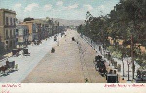 Avenida Juarez y Alameda. Mexico , 1901-07