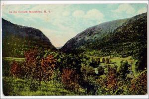 Catskill Mts NY