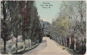 1910 PEORIA Illinois Ill Postcard GLEN OAK PARK DRIVEWAY