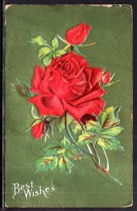 Best Wishes Rose BIN