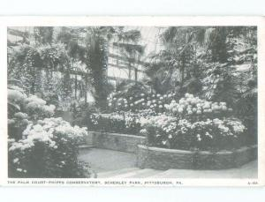 1940's CONSERVATORY AT SCHENLEY PARK Pittsburgh Pennsylvania PA c8502