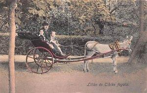 Lilike es Tibike fogata Republic of Hungary Postal Used Unknown