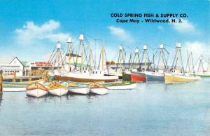 Wildwood New Jersey Cold Spring Fish Co Waterfront Antique Postcard K431737