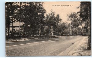 Cedarcroft Metedeconk NJ New Jersey 1940s Vintage Postcard D31