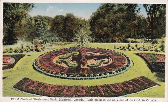 Canada Montreal Floral Clock At Westmount Park
