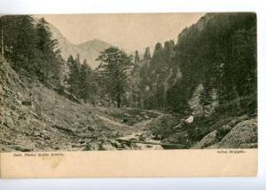 174017 POLAND TATRY Dolina Strqzyska view Vintage postcard