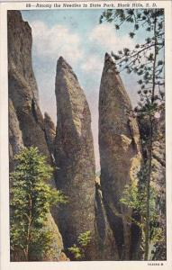 Among The Needles In State Park Black Hills South Dakota 1950